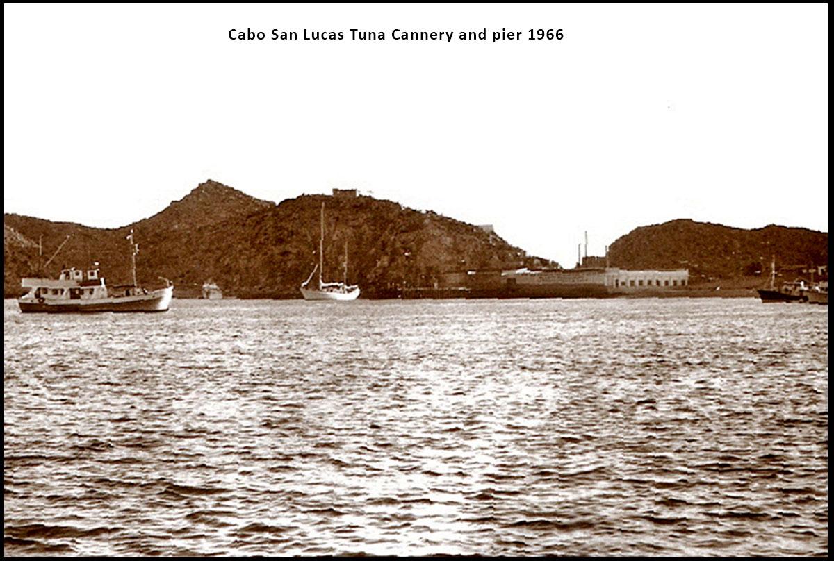 Old tuna cannery 1966