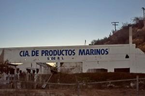 Compania Productos Marinos Cabo