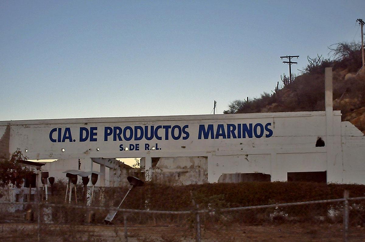 cia-productos-marinos-cabo
