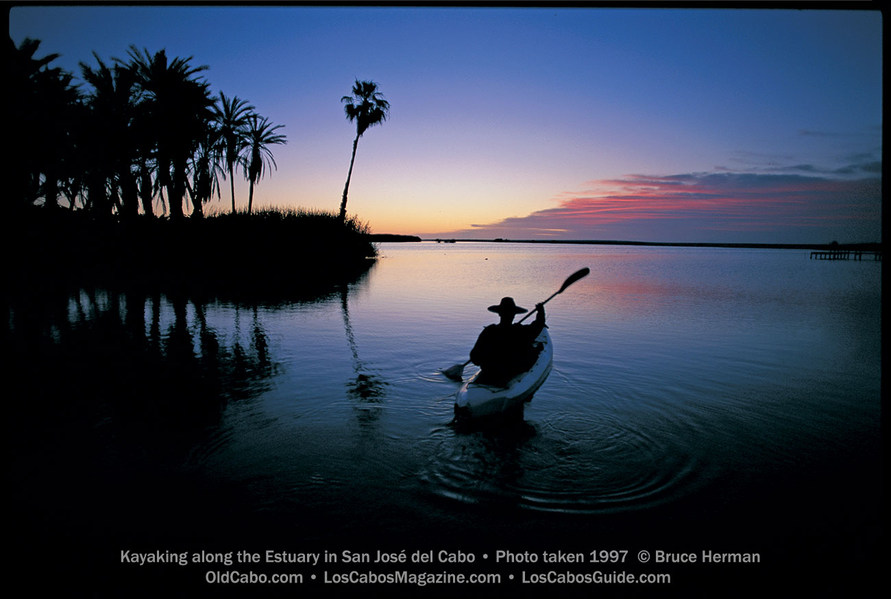 Kayaking along the Estuary in San José del Cabo • Photo taken 1997  © Bruce Herman