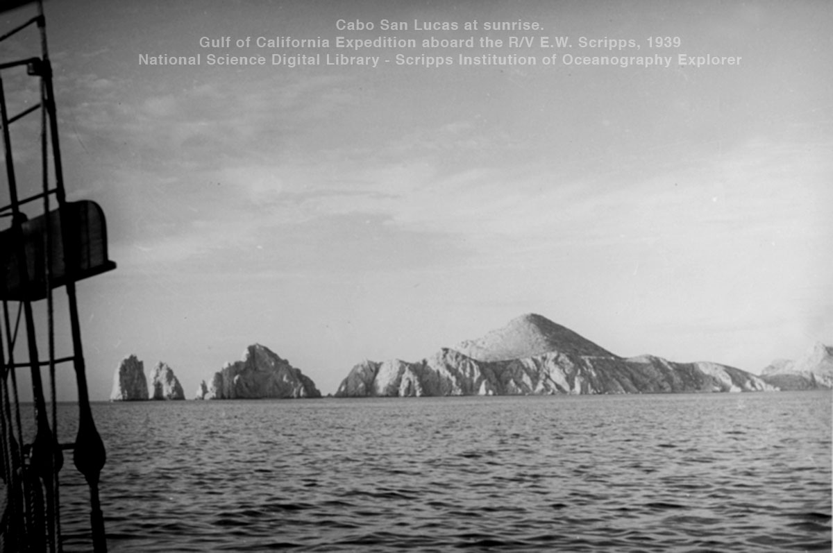 The Cape - The Gray Friars, Cabo San Lucas at sunrise. Gulf of California Expedition aboard the R/V E.W. Scripps, 1939