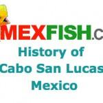 mex-fish-com-2