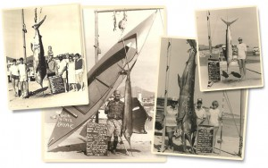 Old photographs circa 1970's from Minerva's Baja Tackle. Photos by Rogelio Covarrubias Wilkes.