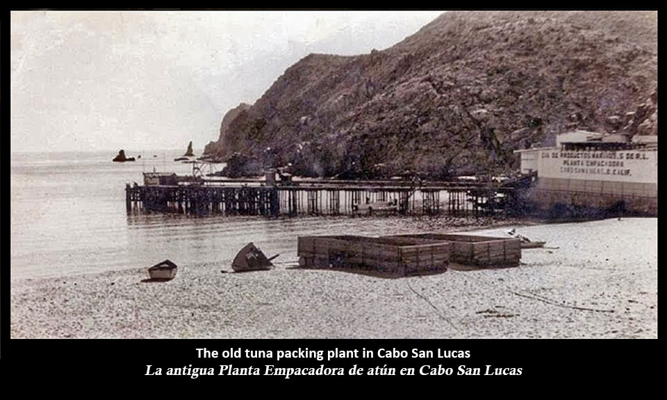 old-tuna-packing-plant-cabo-2