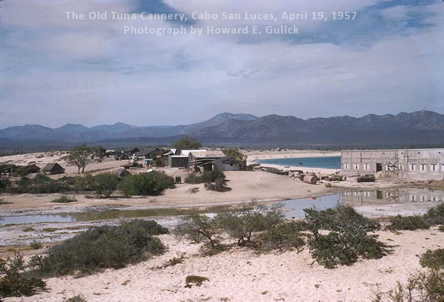 The Old Tuna Cannery, Cabo San Lucas, April 19, 1957. Image by Howard E. Gulick