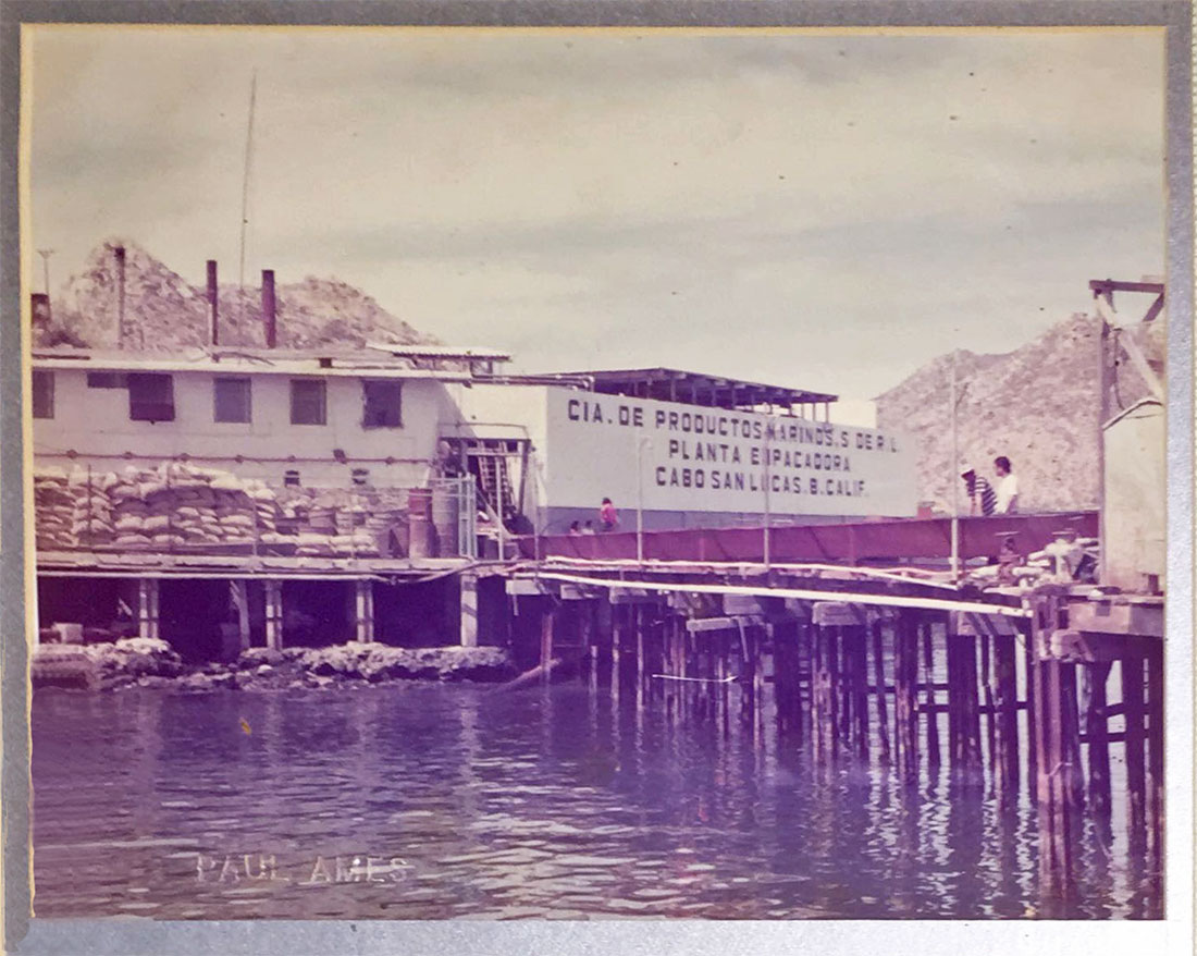 Old Tuna Cannery in Cabo San Lucas. Copy of print displayed on the wall at Latitude 22 The Roadhouse Cabo.