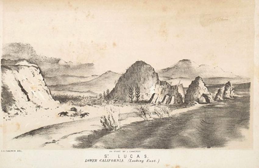 El Arco (Arch) Cabo San Lucas 1851