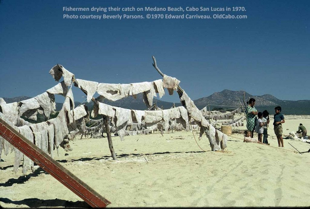 Fishermen drying their catch on Medano Beach Cabo San Lucas 1970
