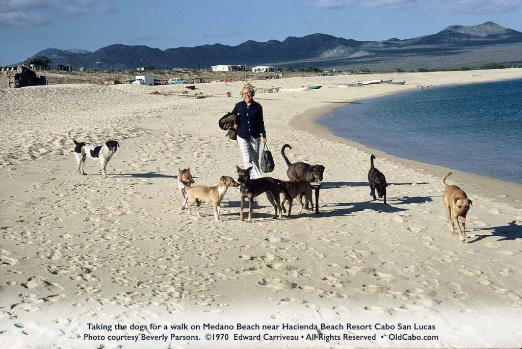 walking-dogs-medano-beach-cabo-1970-carriveau-4